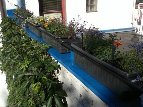 drzaky-na-kvetinace-kovove