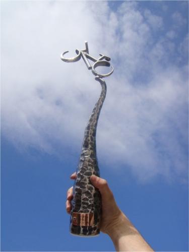kovane-trofeje-merida-bike-vysocina-2010