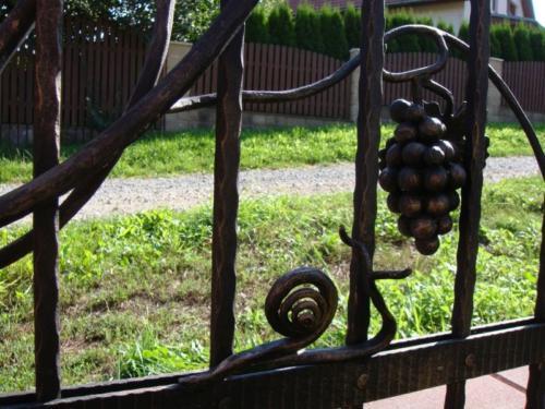 kovany-snek-na-plote-prirodni-desing